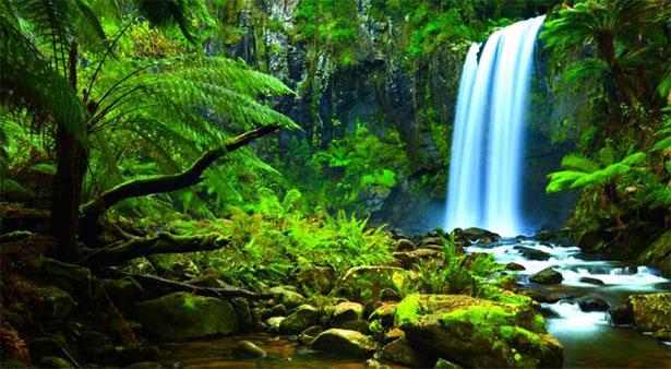 Real Fairytale Landscapes La salvaguardia dell'a...